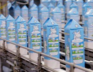 تولید شیر
